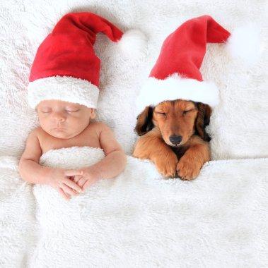 Christmas baby and Santa puppy