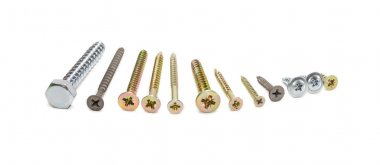 Several wood screws different sizes, shape, design and purpose