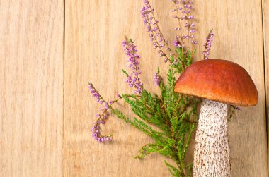 Orange-cap boletus with flowers