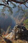 Krásná vief od řeky Sokolica Mountain Dunajec v Pieninách, Polsko