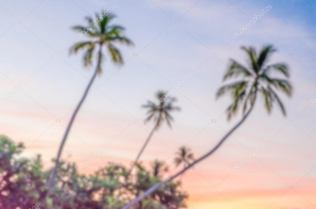 Фотообои Расфокусированным фон тропический закат во Французской Полинезии