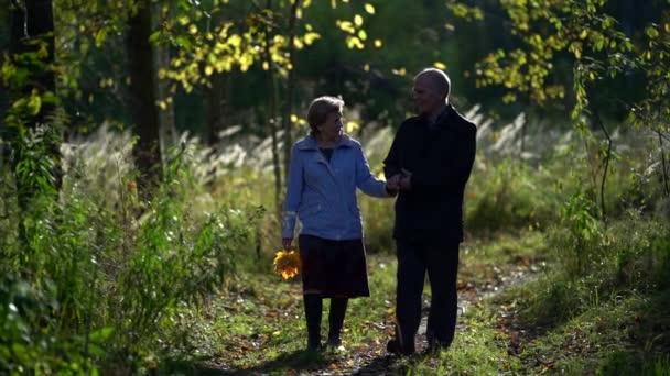 Ein älteres Ehepaar hält Händchen, während es am Nachmittag gemeinsam in einem herbstlichen Park spaziert. Blick auf ein romantisches älteres Paar, das sich in der Natur entspannt. Zeitlupe.