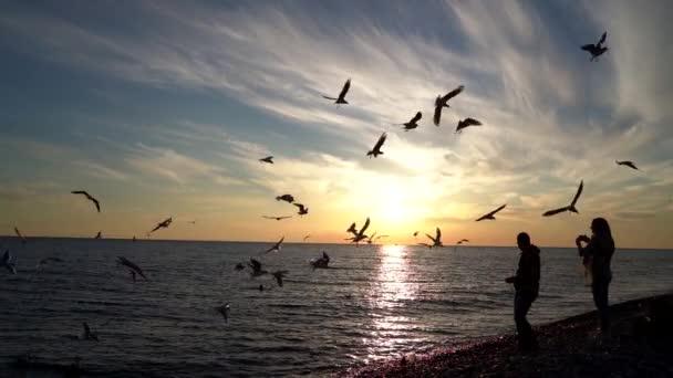 Siluety šťastné rodiny oblečené v bundách a na pláži při západu slunce. Manželé stojí a dívají se na spoustu racků. Koncept rodiny, svobody a cestování.
