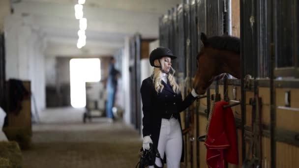 Žokej komunikuje s koněm ve stáji