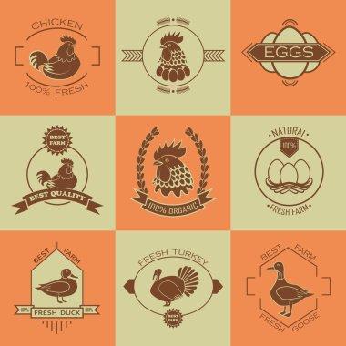 Set of poultry farm logo, emblem. Chicken, turkey, goose, duck.