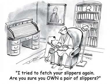 Dog cannot find slippers