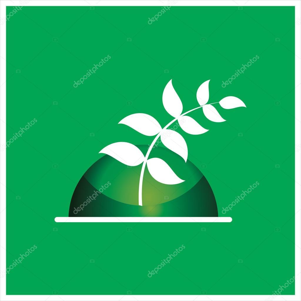 Plant & agriculture   harvesting  Vector illustration