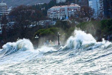 Storm on the Black Sea. Yalta, Crimea, Ukraine