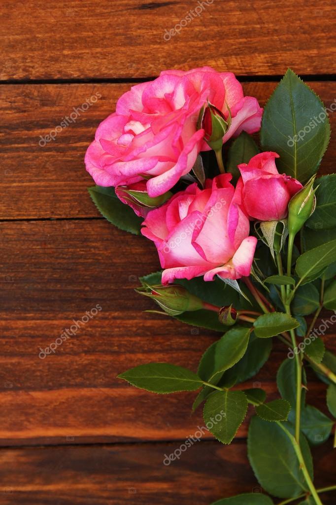 Imagenes Hermosas Flores Hermosas Flores Rosas Foto De Stock
