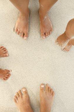 Family feet on sand
