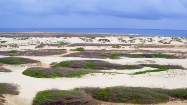 Antenna da dune di sabbia sullisola di Aruba nei Caraibi