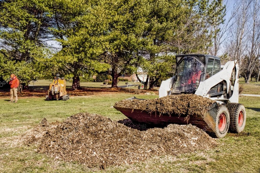 Dozer removing Debris from stump recently grinded