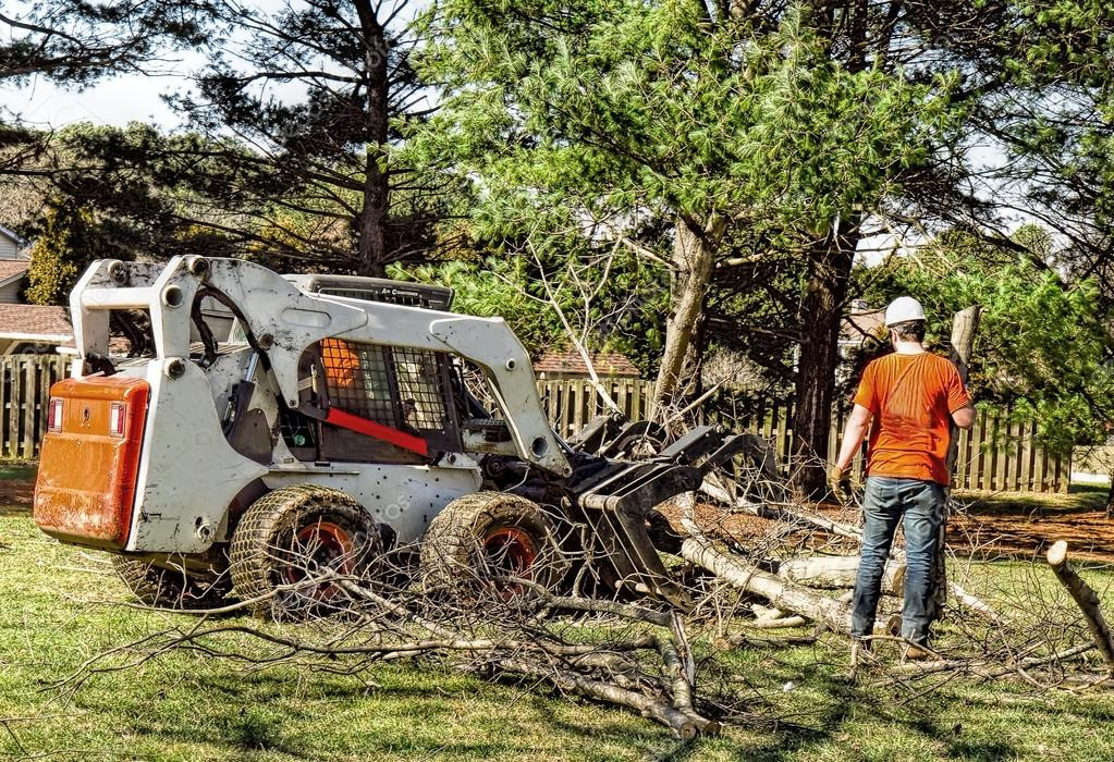 Man assisting Dozer while removing Heavy amounts of limbs and branches tree cut down