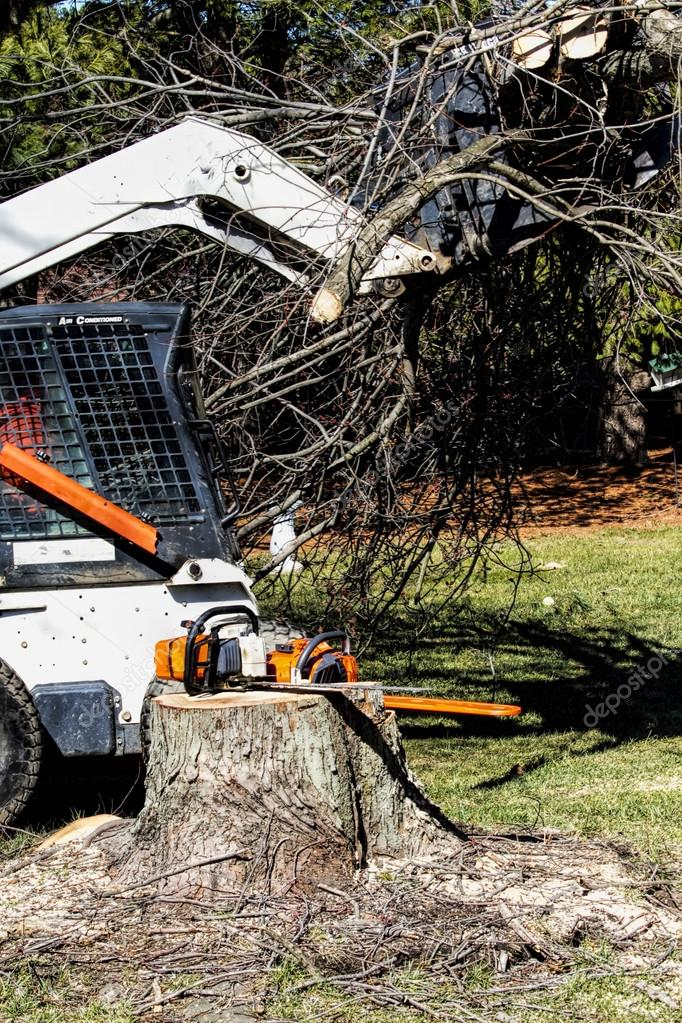 Dozer removing Heavy amounts of limbs and branches tree cut down
