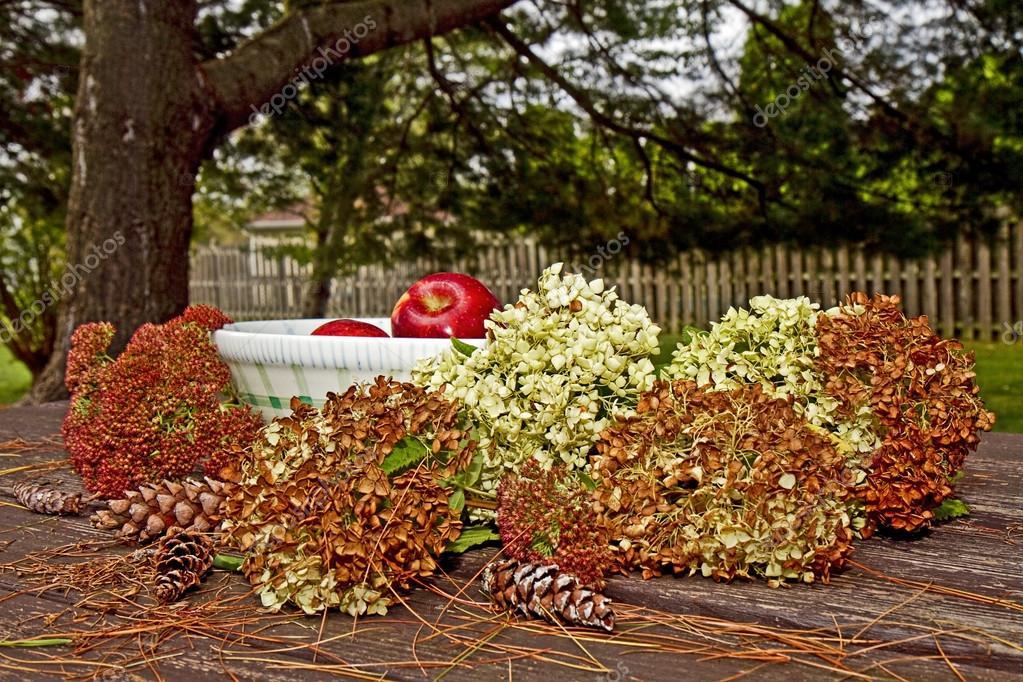 Group of Apples Fall Season