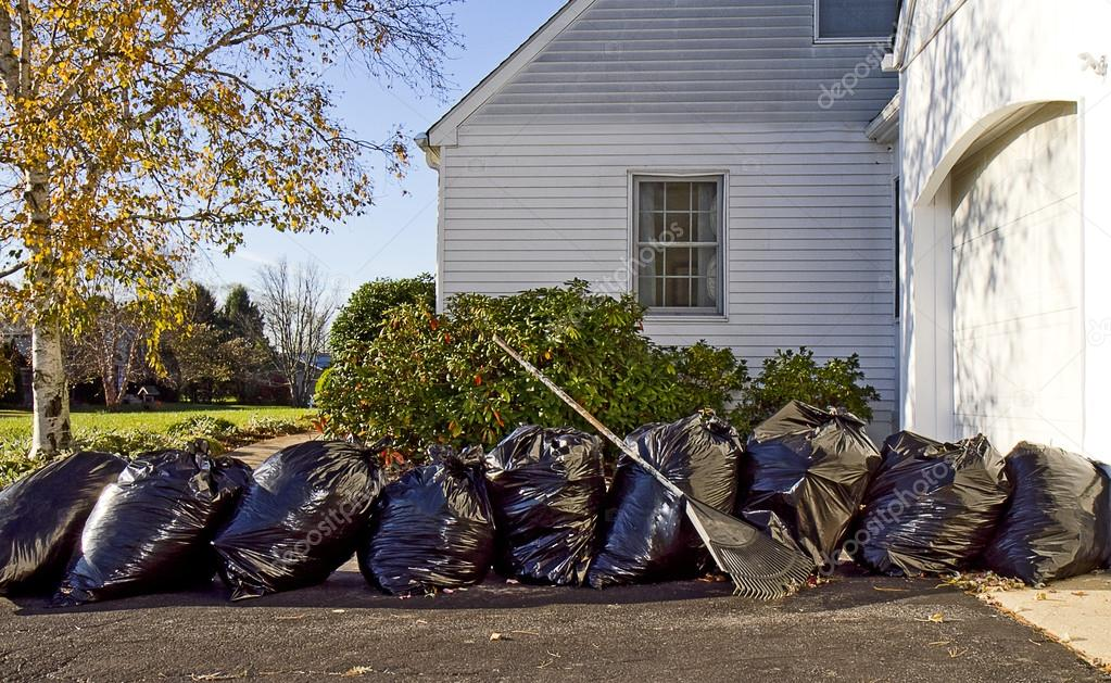 Cleanup of Leaves in Fall