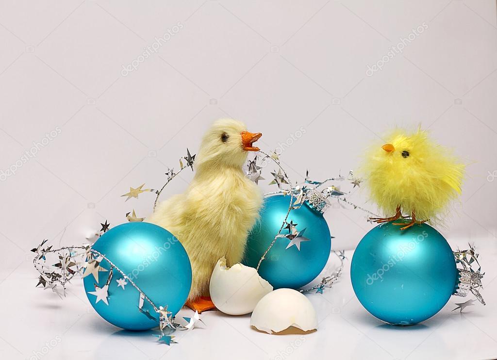 Christmas Chicks And Blue Christmas Decorations Stock Photo