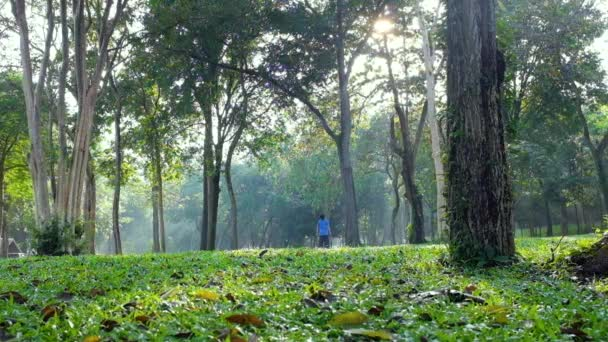 Šťastné asijské dítě obdivuje zázraky přírody nebo krásy zeleného lesa během léta, venkovní aktivity se slunečním světlem. Konceptuální propojení dětí s přírodou. Cestování na dovolenou.
