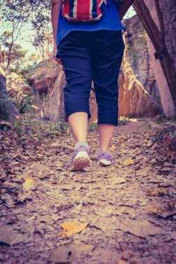 Woman Walking Exercise In Forest, Motivational Health Concept, Outdoors.
