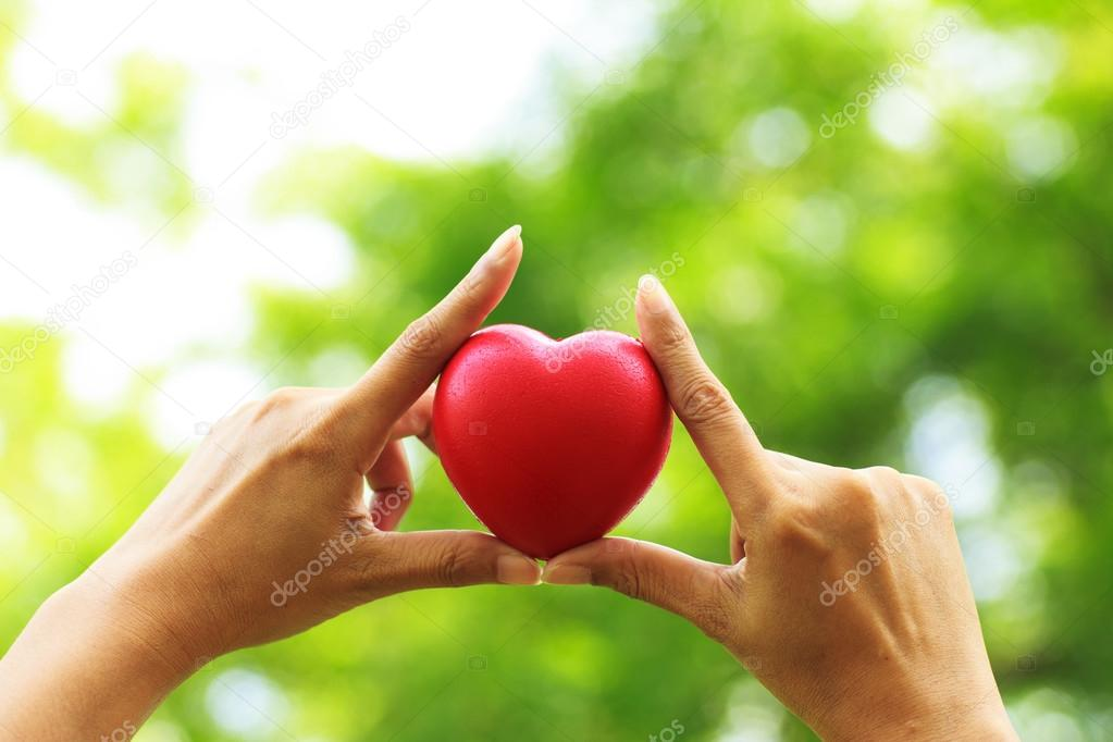 Stock Photo - Heart in hands on nature background