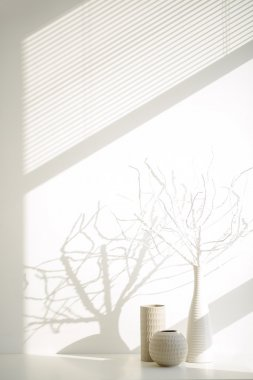 White vases with branches