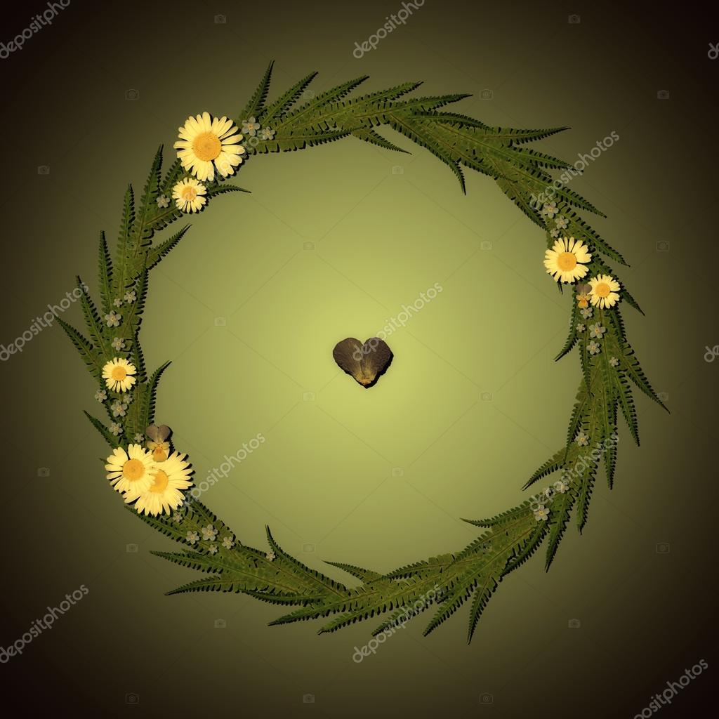 Floral Round Frame with chamomile, leaves and green background.