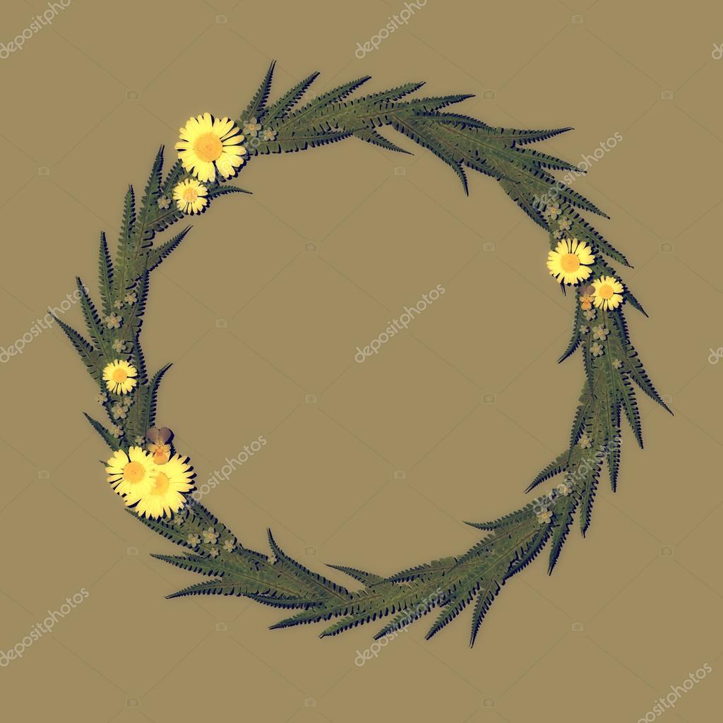 Floral Round Frame with chamomile, leaves and gray background.