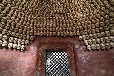 row of skulls. A shrine adorned with skulls at Larung gar(Buddhi