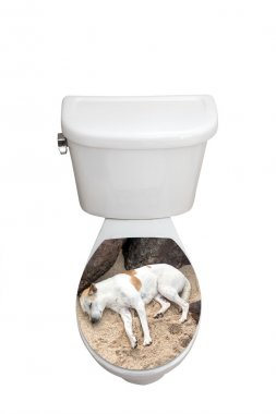 toilet bowl closed cover with photo sticker
