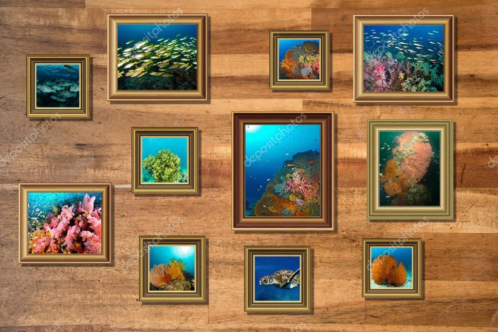 Fotorahmen Collage Landschaft auf hölzernen Hintergrund — Stockfoto ...