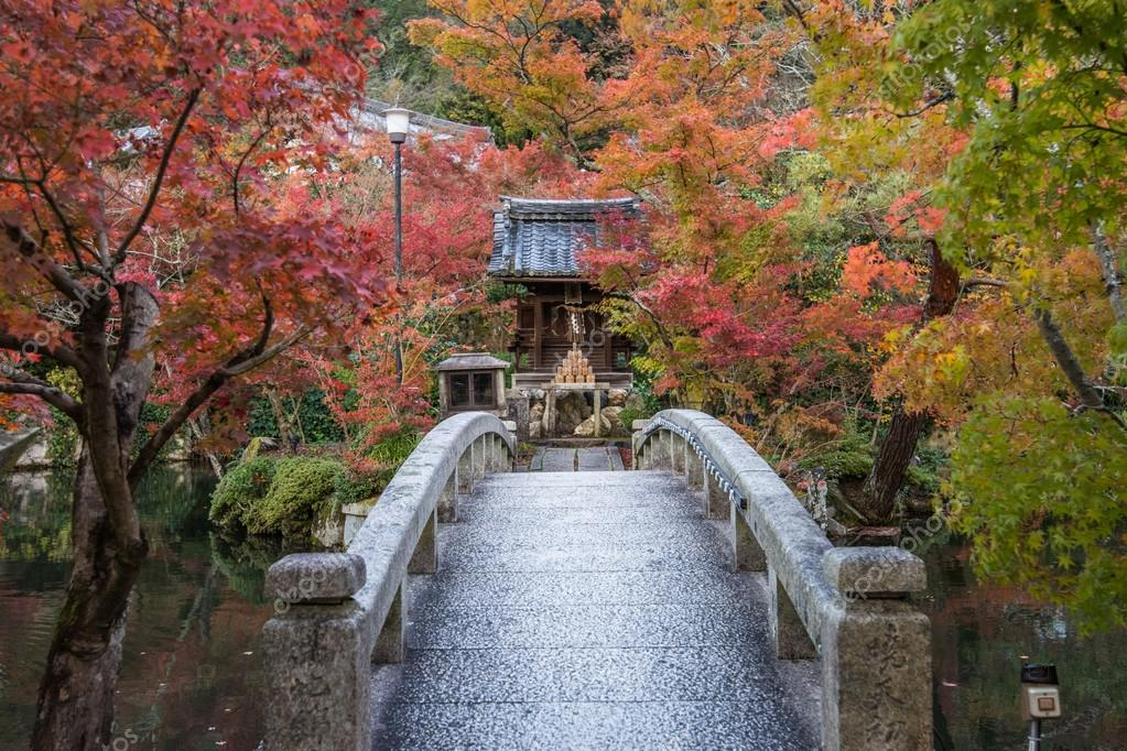 京都、永観寺の紅葉 — ストック...