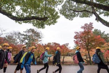 NARA, JAPAN - NOVEMBER 26: Tourists and wild deer in Nara on Nov