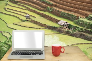 laptop and red mug on wood table with rice terrace, Sapa, Vietna