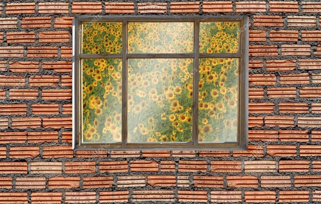 window on brick wall with sunflower