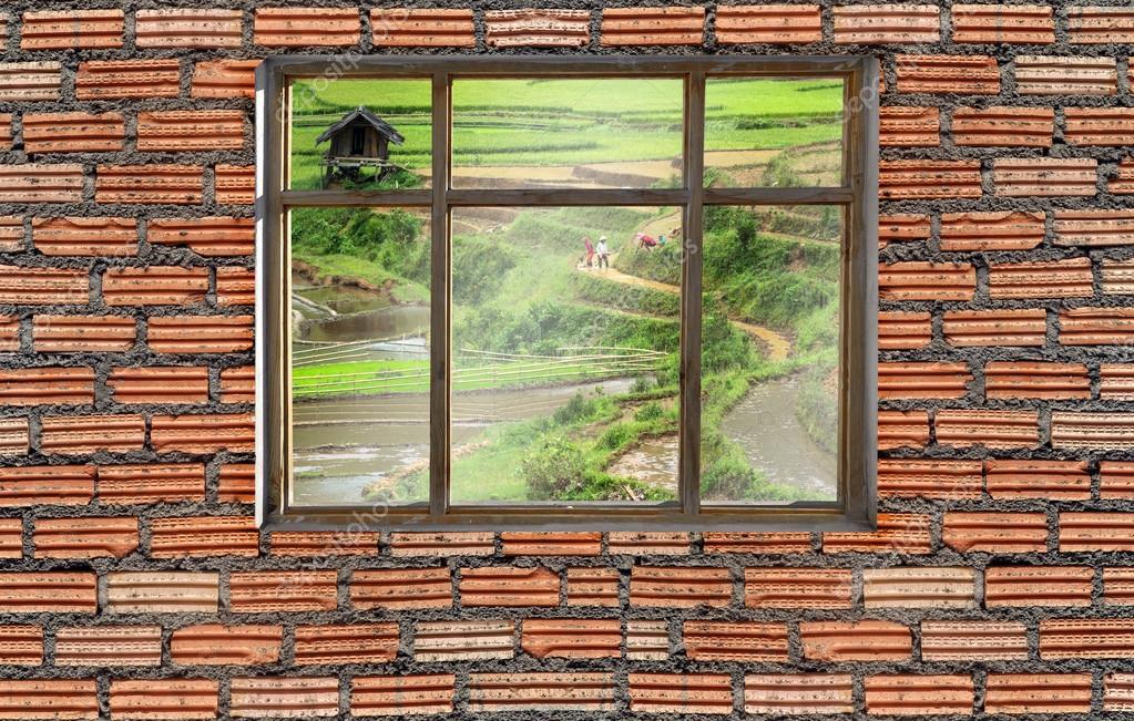 window on brick wall with Sapa rice field