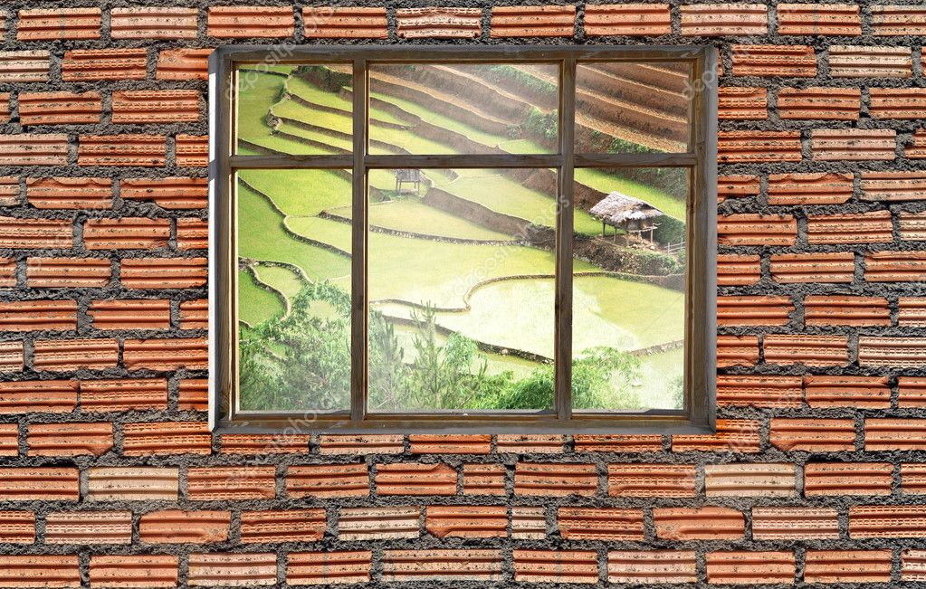 window on brick wall with Sapa rice field