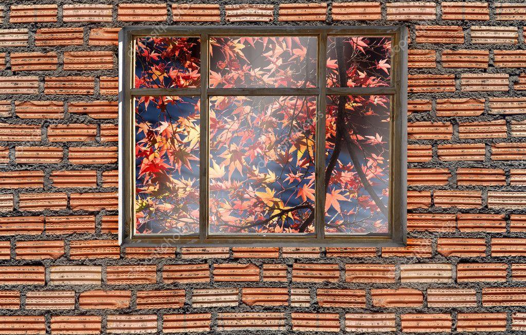 window on brick wall with japan autumn