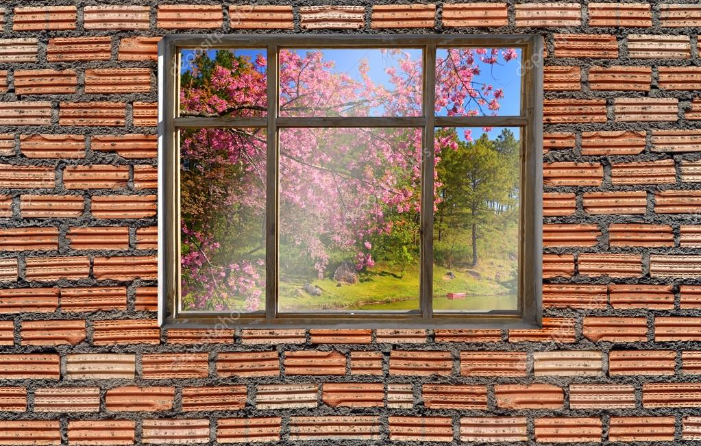 window on brick wall with sakura