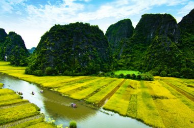 NgoDong river throught rice fields in Ninh Binh, Vietnam.