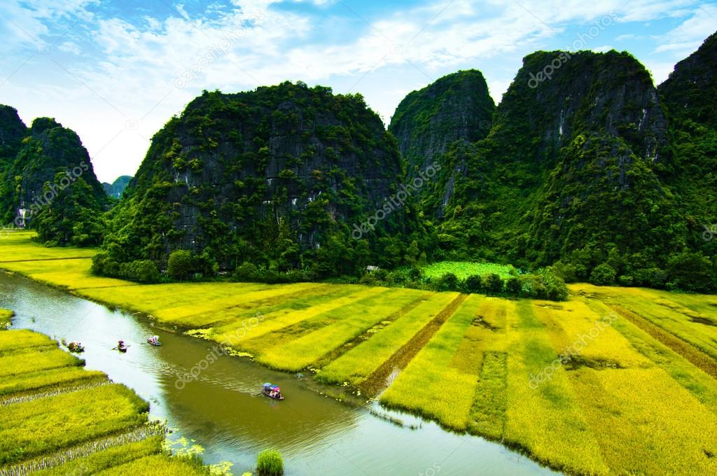 NgoDong river throught rice fields in Ninh Binh, Vietnam.
