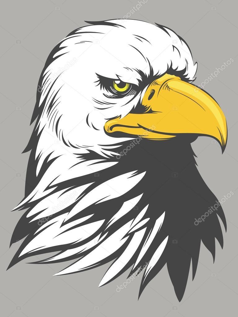 Dibujos animados de cabeza de águila calva — Archivo Imágenes ...