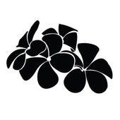 Fotografie frangipani silhouettes for design vector