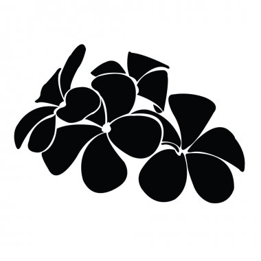 Frangipani silhouettes for design vector