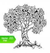 sám strom