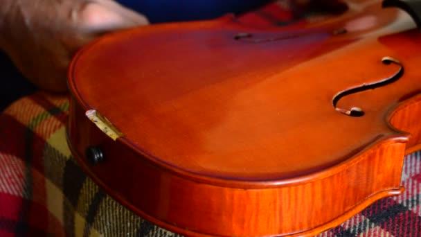 Geigenbauer, der in einer Geige oder Bratsche am Arbeitsplatz arbeitet