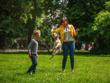 Family having fun in city summer park mother with son playing on the grass with little puppy dog