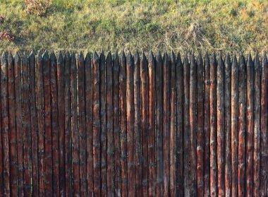 Stockade fence and grass