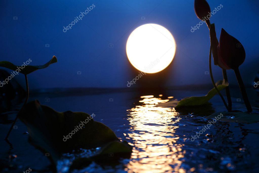 Mid Autumn Moon in the sky