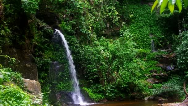 kleiner Wasserfall im tropischen Regenwald