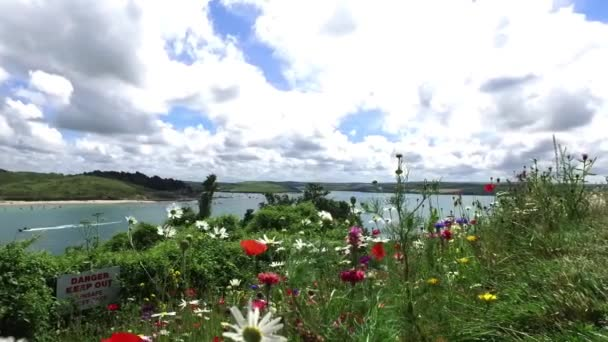 Pohled přes krásné Cornish ústí, prostřednictvím mák sedmikrásky, pampelišky a jiných divokých květin, vlající ve větru na slunečného léta den